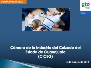 Cámara de la Industria del Calzado del Estado de Guanajuato (CICEG)