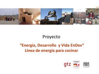 """Proyecto  """"Energía, Desarrollo  y Vida EnDev"""" Línea de energía para cocinar"""