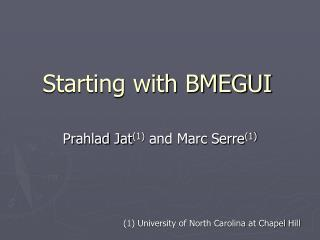Starting with BMEGUI