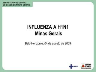 INFLUENZA A H1N1  Minas Gerais