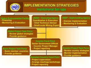 IMPLEMENTATION STRATEGIES Institutional Set-ups