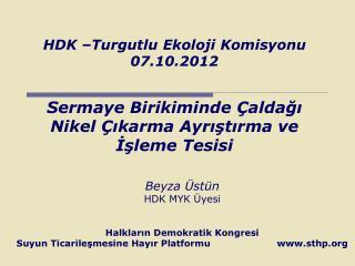 Beyza �st�n  HDK MYK �yesi  Halklar?n Demokratik Kongresi