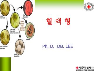 Ph. D,  DB. LEE