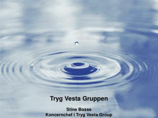 Tryg Vesta Gruppen Stine Bosse Koncernchef i Tryg Vesta Group