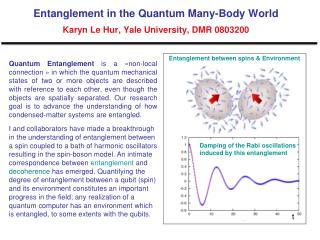 Entanglement in the Quantum Many-Body World   Karyn Le Hur, Yale University, DMR 0803200