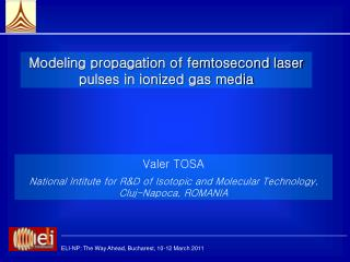 Modeling propagation of femtosecond laser pulses in ionized gas media
