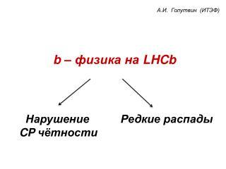 b  – физика на  LHCb