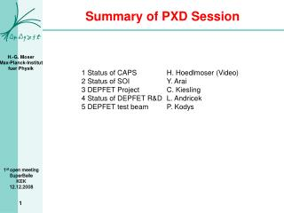 Summary of PXD Session
