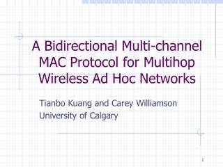 Wireless Ad-Hoc Networks