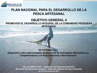 Ing. Luis Merino F�lix -  Supervisor de Programa Sectorial I