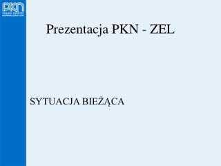 Prezentacja PKN - ZEL