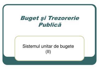 Buget ?i Trezorerie Public?