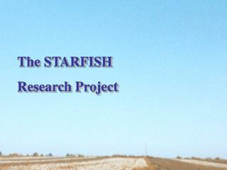 The STARFISH Research Project