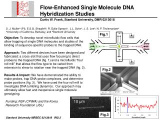 Flow-Enhanced Single Molecule DNA Hybridization Studies