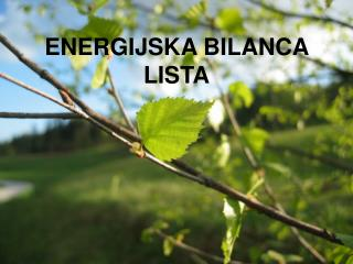 ENERGIJSKA BILANCA LISTA