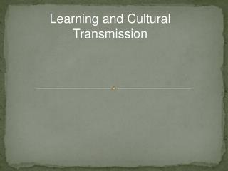 Learning and Cultural Transmission