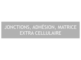 JONCTIONS, ADH SION, MATRICE EXTRA CELLULAIRE
