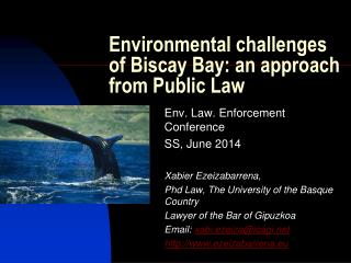 Environmental challenges of Biscay Bay: an approach from Public Law