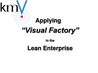"Applying  ""Visual Factory"" in the Lean Enterprise"