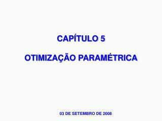 CAP�TULO 5 OTIMIZA��O PARAM�TRICA