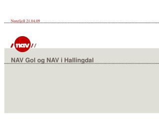 NAV Gol og NAV i Hallingdal
