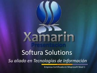Softura Solutions Su aliado en Tecnologías de Información