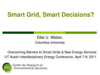 Smart Grid,  Smart Decisions?
