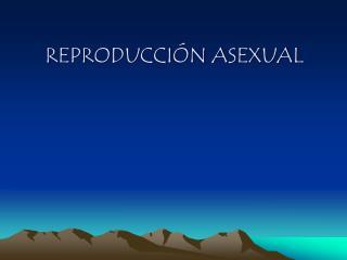 REPRODUCCIÓN ASEXUAL
