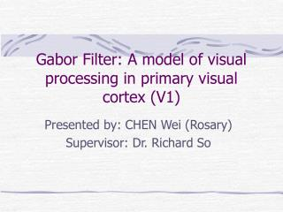 Gabor Filter: A model of visual processing in primary visual cortex (V1)