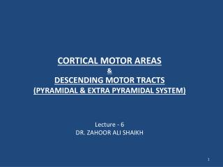 CORTICAL MOTOR AREAS &  DESCENDING MOTOR TRACTS  (PYRAMIDAL & EXTRA PYRAMIDAL SYSTEM)