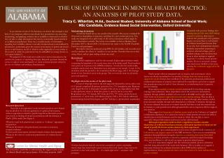 THE USE OF EVIDENCE IN MENTAL HEALTH PRACTICE:  AN ANALYSIS OF PILOT STUDY DATA.