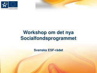 Workshop  om det nya Socialfondsprogrammet Svenska  ESF-rådet