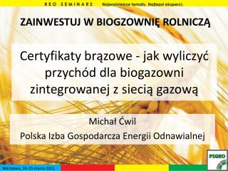 Certyfikaty brązowe - jak wyliczyć przychód dla biogazowni zintegrowanej z siecią gazową