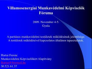Villamosenergiai Munkavédelmi Képviselők Fóruma 2009. November 4-5. Gyula