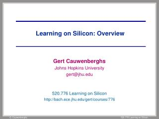 Learning on Silicon: Overview