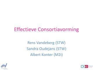Effectieve Consortiavorming