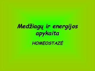Medžiagų ir energijos apykaita