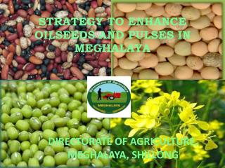 STRATEGY TO ENHANCE OILSEEDS AND PULSES IN MEGHALAYA