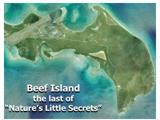 "Beef Island the last of  ""Nature's Little Secrets"""