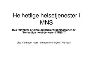 Helhetlige helsetjenester i MNS