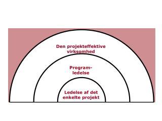 Program- ledelse