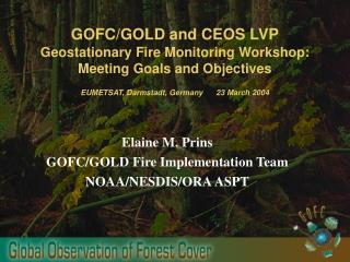 Elaine M. Prins GOFC/GOLD Fire Implementation Team NOAA/NESDIS/ORA ASPT
