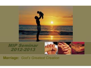 MIP Seminar 2012-2013
