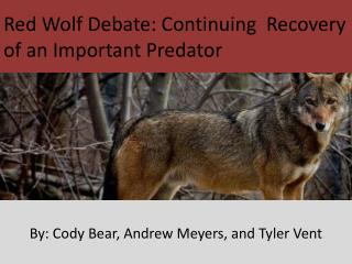 Red Wolf Debate: Continuing  Recovery of an Important Predator