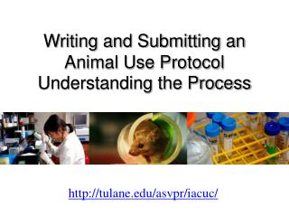 Writing and Submitting an Animal Use Protocol Understanding the Process