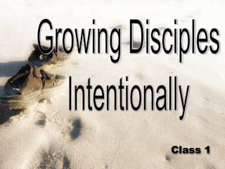 Growing Disciples Intentionally