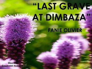 """LAST GRAVE AT DIMBAZA"""