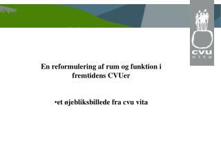 En reformulering af rum og funktion i fremtidens CVUer et øjebliksbillede fra cvu vita