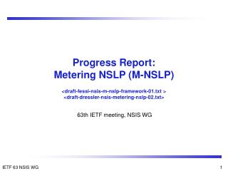 Progress Report: Metering NSLP (M-NSLP)