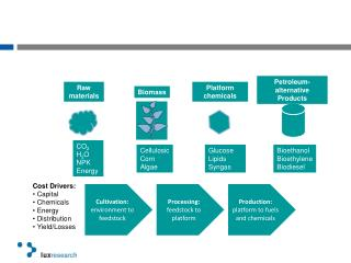 Cost Drivers: Capital Chemicals Energy Distribution Yield/Losses